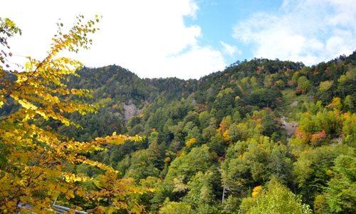 2012年の紅葉は少し遅れ気味ですが、なかなかいい色になってきました。