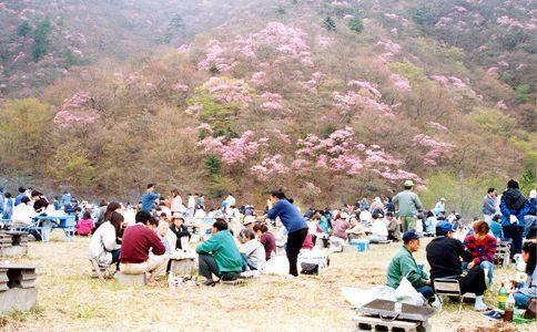 ビーフピア栗山2012