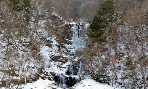 蛇王も健在。むしろ氷瀑が見頃。 若間地区 蛇王の滝
