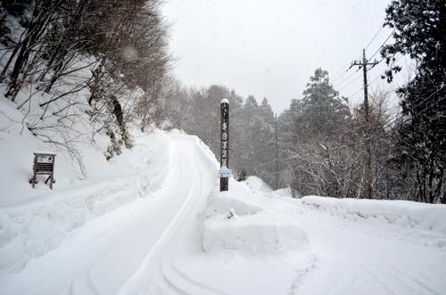 130311 tesirozawa 15