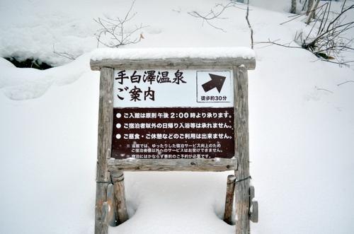 130311 tesirozawa 16