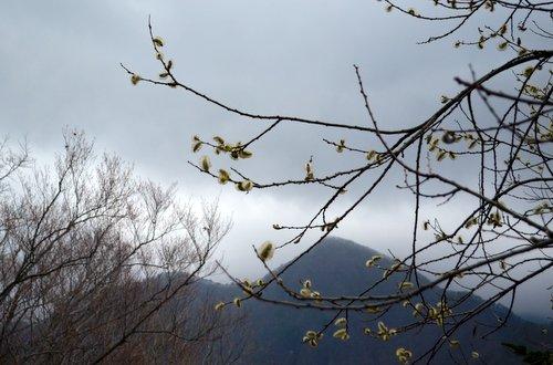 130408 aponashiyama 03