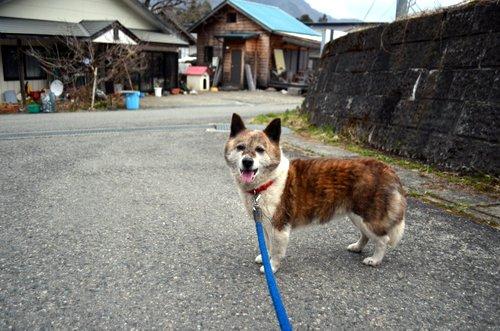 130408 aponashiyama 09
