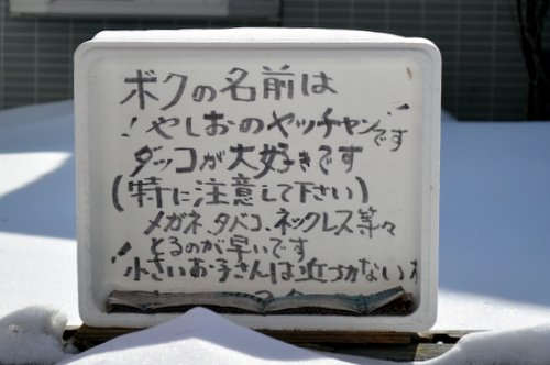 130419 yashio 29