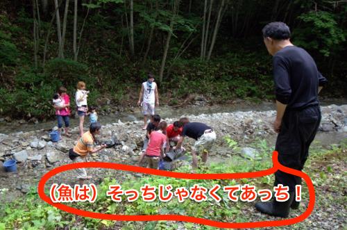 130805 yasuraginomori 14