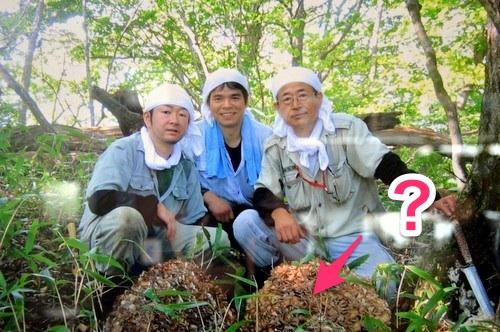 131029 shinsoba 02