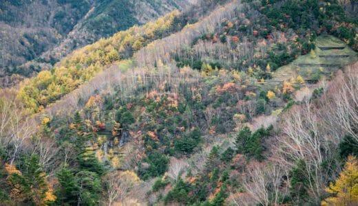 【山王林道】奥日光と栗山を結ぶ。紅葉がきれいな穴場ルート