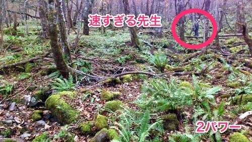 131115 misawaotaki 16