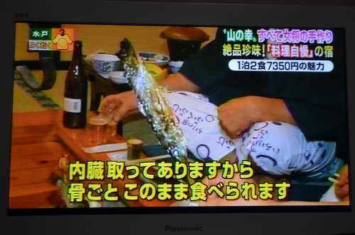 131210 fukufuji 10