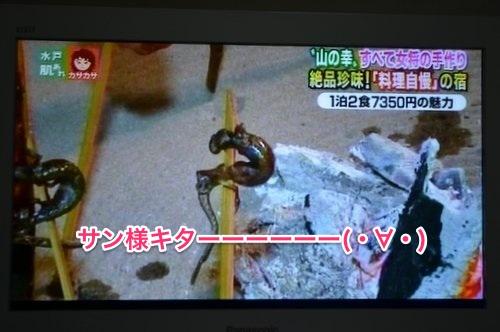 131210 fukufuji 12