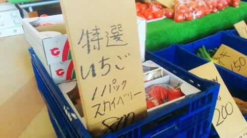 140221 michinoeki yunishigawa 05