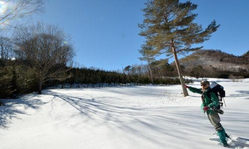 土呂部の雪体験を楽しむ前に、度肝をぬかれた<日光茅ボッチの会2014 ①>