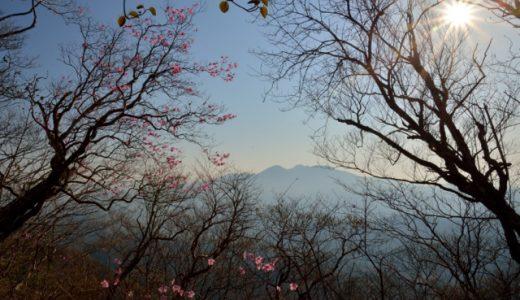 月山登山2014 ヤシオツツジと、ある栗山人の習慣