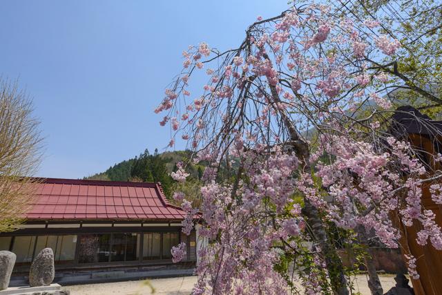 Gassan yashio2015 12