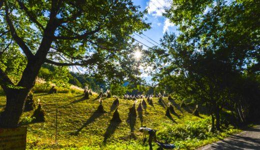 10月は紅葉だけじゃない。土呂部で茅ボッチのある「日本の原風景」を見よう