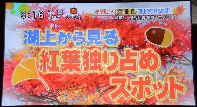 Kawamatako 02