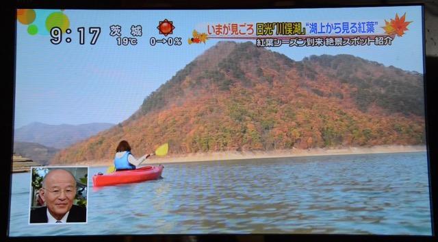 Kawamatako 14