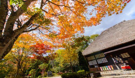 【栗山の紅葉2015】全体的に見頃!美しい紅葉をゆったりぜいたくに楽しむ!※更新あり