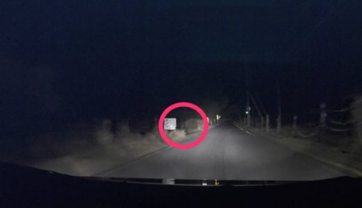 夜道、突然のシカに注意(映像あり)!人や車が少なくても「安全運転」で