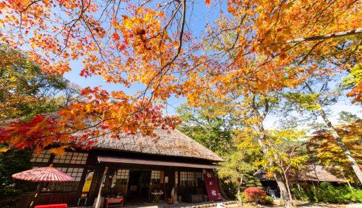 【湯西川温泉 観光】平家落人の里 湯西川温泉の魅力とは?