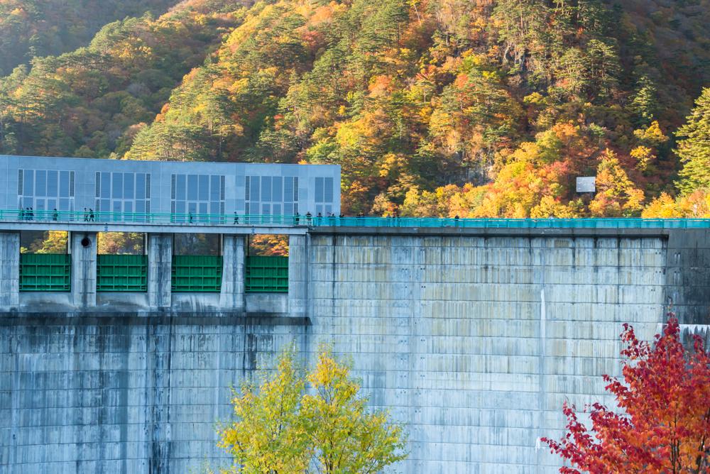 渡らっしゃい吊り橋から見た川俣ダム(紅葉)