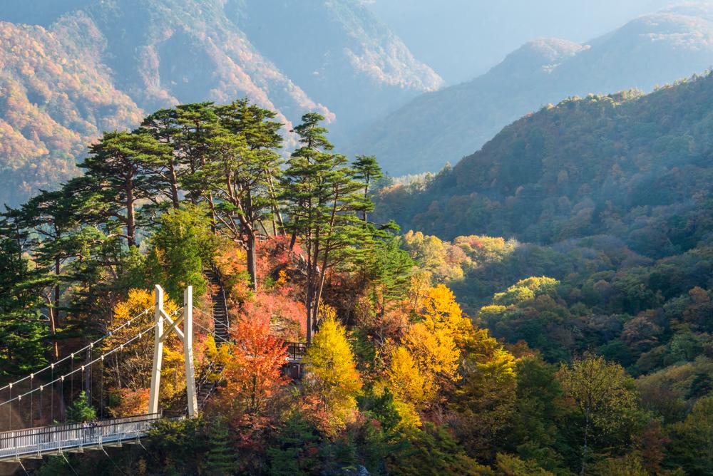川俣ダム天端から見る瀬戸合峡(紅葉)