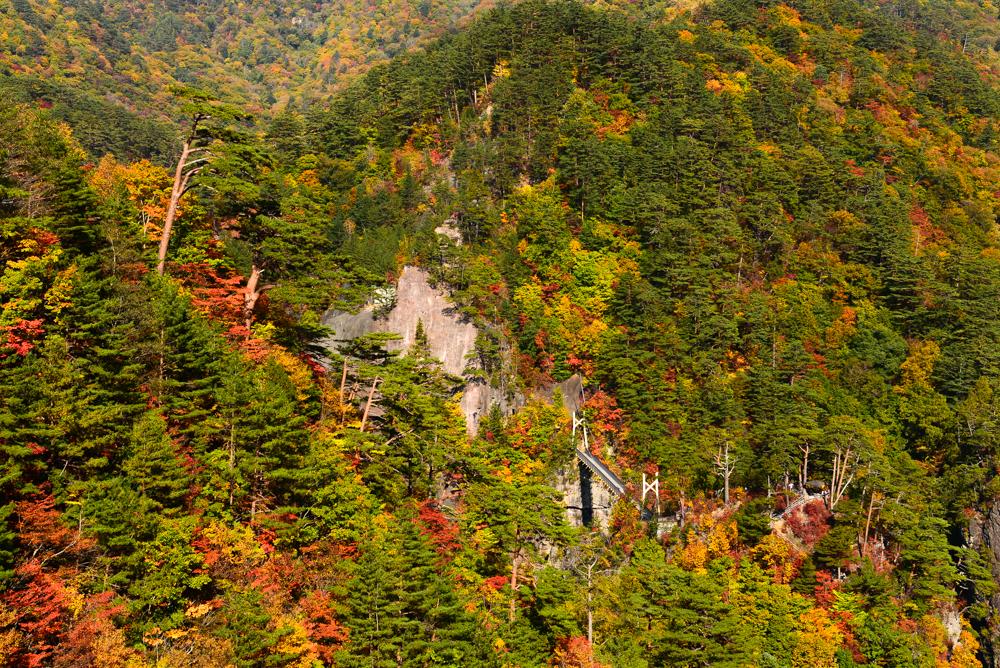 旧道から見る瀬戸合峡の紅葉