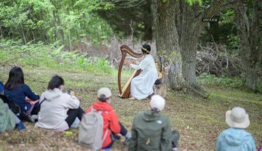 【森のハープ弾き 阿久津 瞳ハープコンサート レポ】土呂部の草原にまたひとつ、新しい魅力が生まれました
